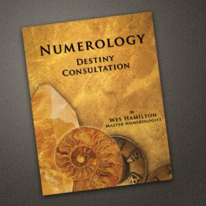 Numerology Destiny Consultation