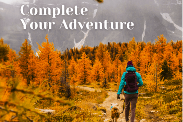 Complete your adventure